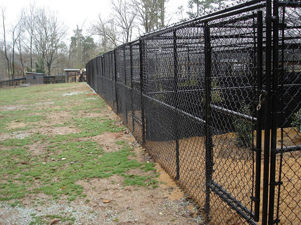 Dog Kennel Fencing Charlotte Nc Allison Fence Company